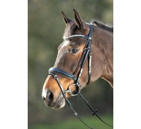 HFI Bridle Shiny Black