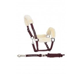 HARCOUR Rialto Halter Sheep and Lead Rope Burgundy