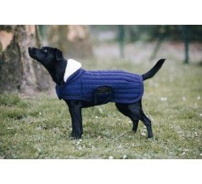 KENTUCKY Dog Coat Pearls