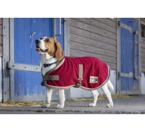 DIEGO Polyfun Dog Rug Burgundy