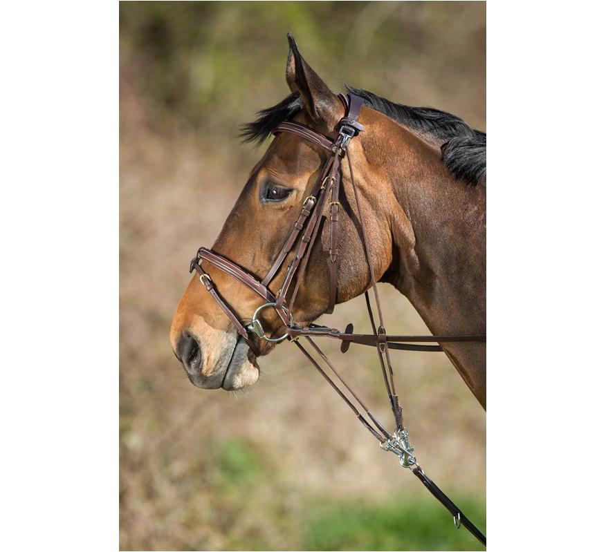 HFI Riding World Gogue mit Umlenkrollen braun