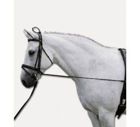 EQUITHEME Elastic training reins adjustable