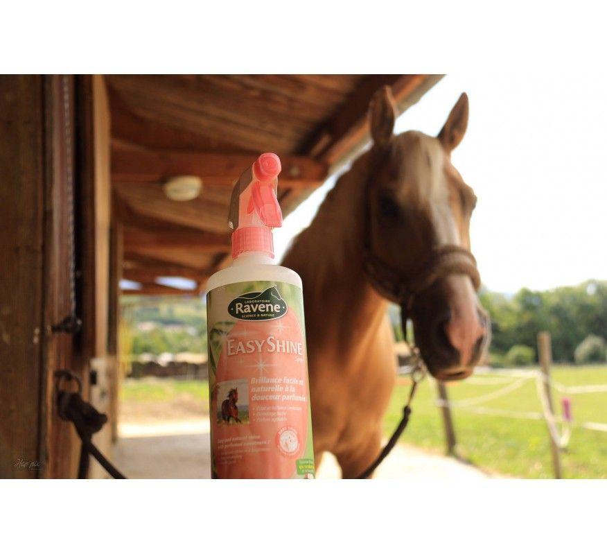 RAVENE Easy shine spray