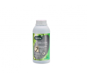 RAVENE Becool Solution 500ml