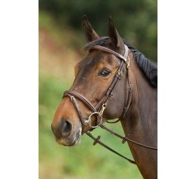 HFI Bridle Functional
