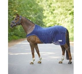 WALDHAUSEN Protect Horsewalker fly rug