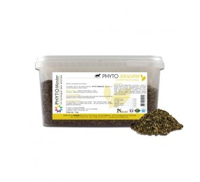 PHYTOMASTER Phyto Mobilité 1kg