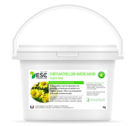 ESL LABORATOIRE Chrysantellum Americanum - Horsefeeder - Pure plant 1kg