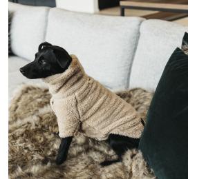 KENTUCKY hunde pullover Teddy Fleece