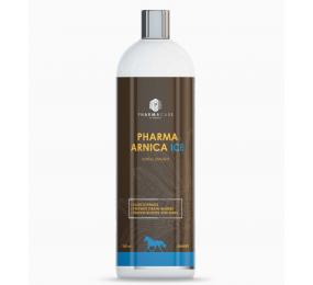 PHARMACARE Pharma Arnica Ice