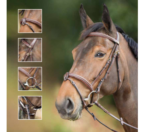 HFI Bridle Elegant Black