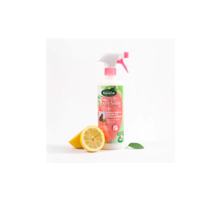 RAVENE Easy shine spray 750ml