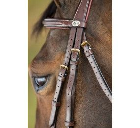 HFI Bridle German